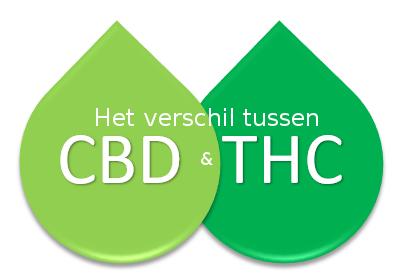 Het verschil tussen CBD en THC duidelijk uitgelegd