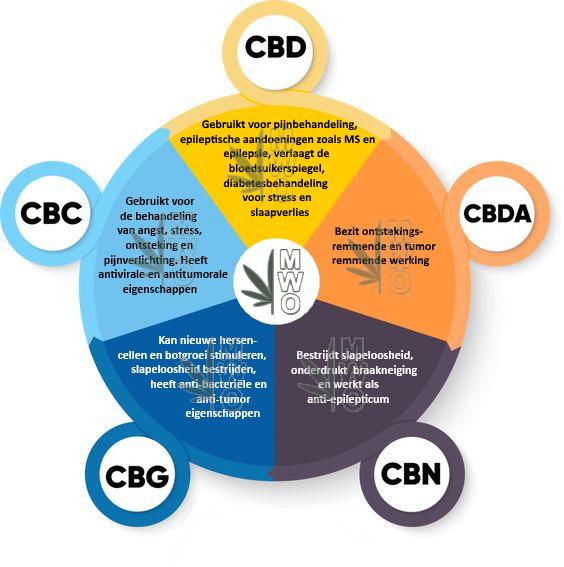 Welke cannabinoide doet wat voor het lichaam